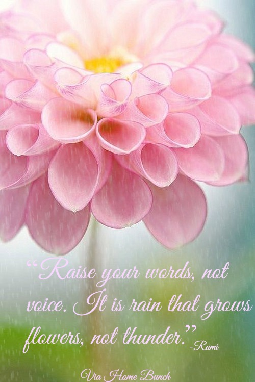 "Quotes. ""Raise your words, not your voice. It is rain that grows flowers, not thunder."" #Quotes"