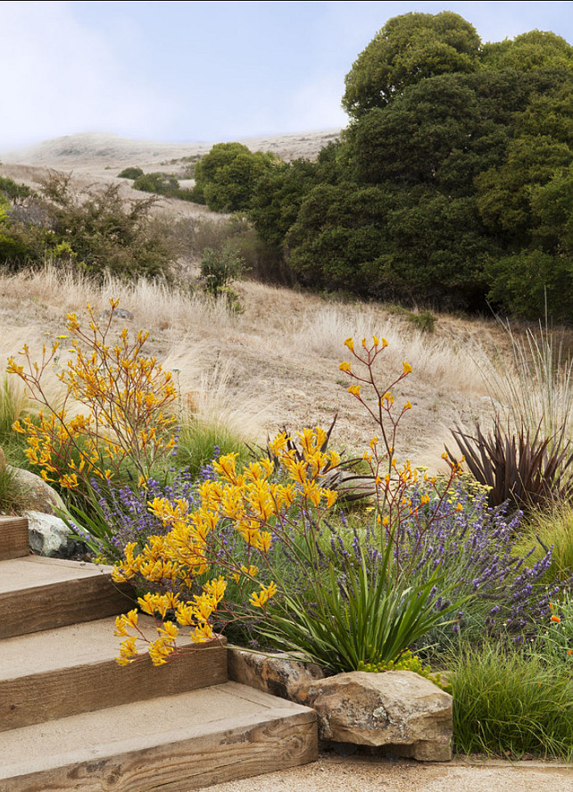 Landscaping Design. Inspiring colors. #Landscaping