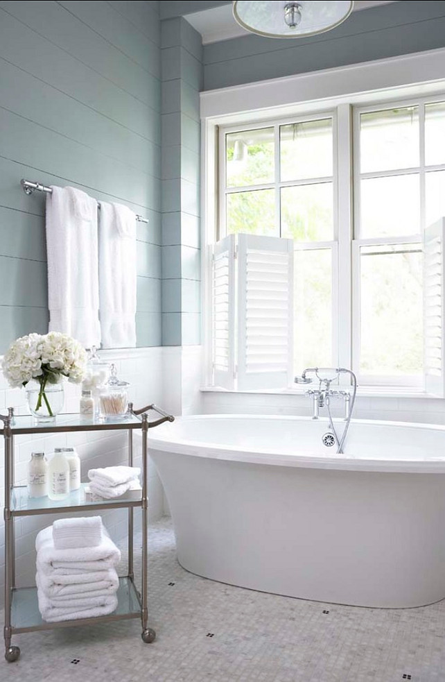 Bathroom Paint Color Sherwin-Williams SW7621 Silvermist