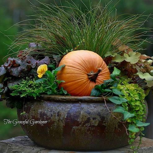 Outdoor Fall Decor Ideas. Decorating Your Garden With Pumpkins. #FallDecor Via Home Talk.