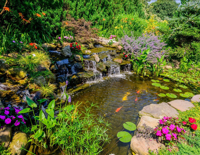 Pond Ideas. Koi Pond. #Pond #PondDesign #KoiPond